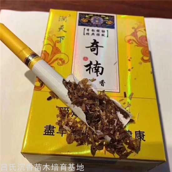 奇楠香烟哪里有卖?
