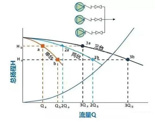 6403 (2).jpg
