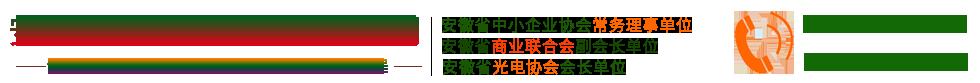 安徽金彩光电科技有限公司