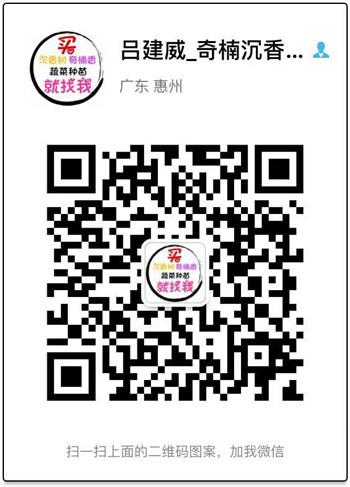 青娱乐最新官网种青娱乐网站电话