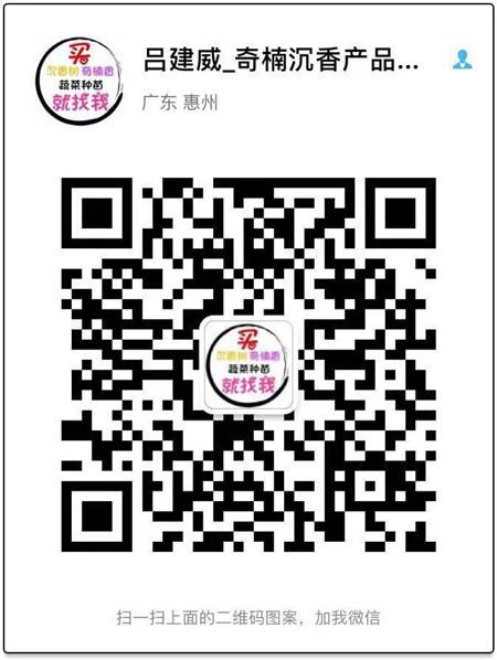 青娱乐最新官网种青娱乐网站订购电话