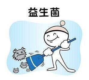 台湾益生菌