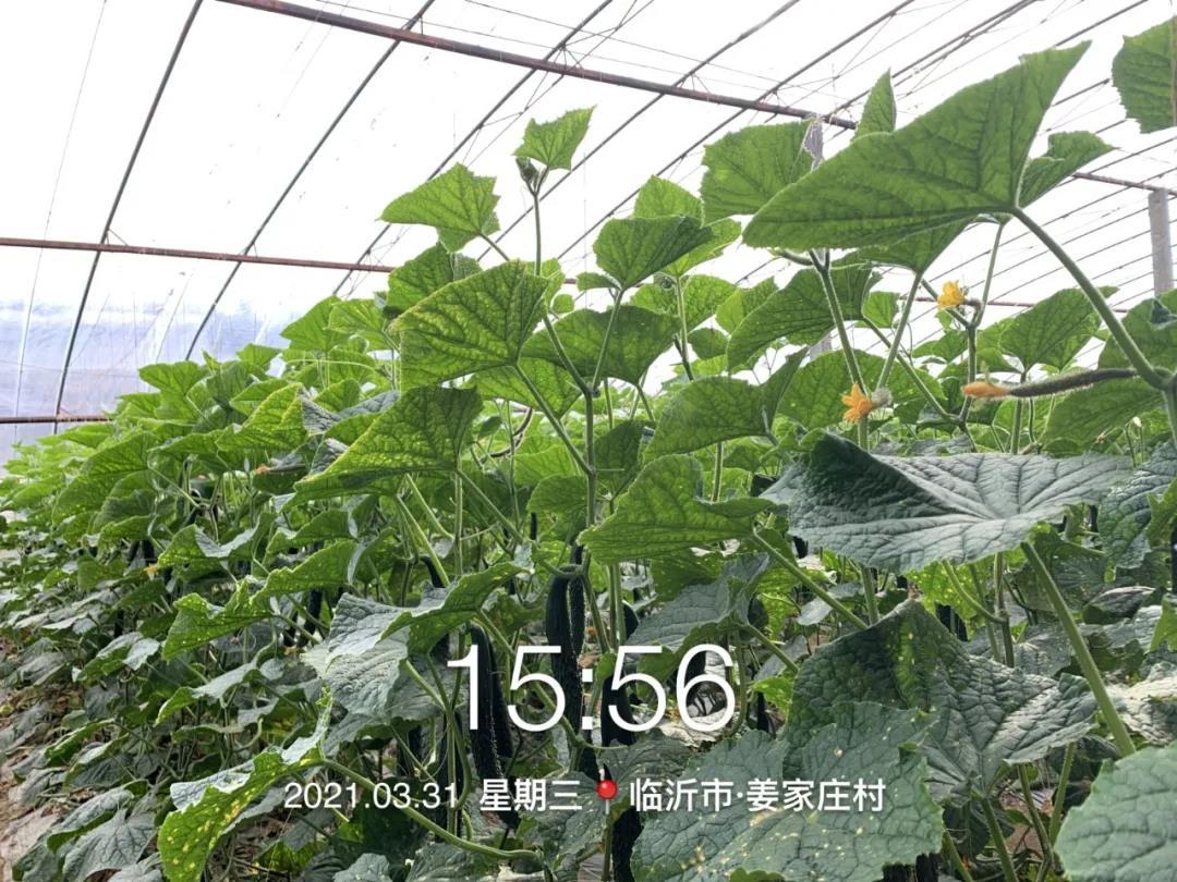 微信圖片_20210511104658.jpg